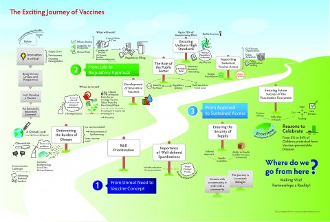 The Exciting journey of a vaccine
