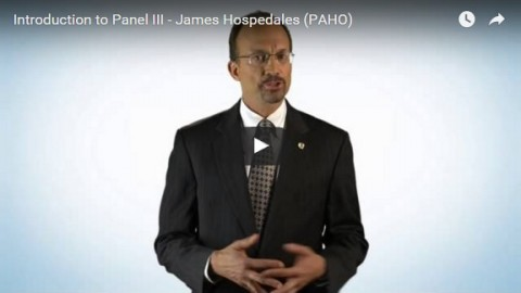 Introduction to panel III – James Hospedales (PAHO)