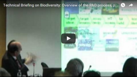 Technical Briefing on Biodiversity: Overview of the R&D process, part 2