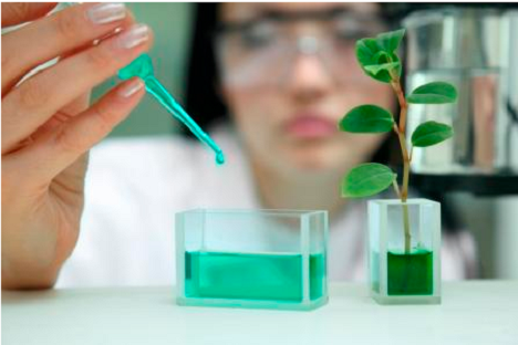 Technical briefing on Biopharmaceutical Innovation: The Value of Legal Certainty