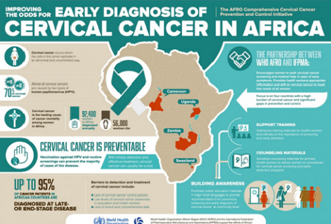 The AFRO Comprehensive Cervical Cancer Prevention and Control Initiative