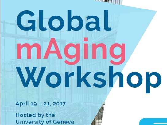 Global workshop on mHealth for Ageing