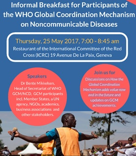 How the WHO GCM/NCD adds value now and in the future