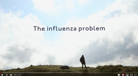 The influenza problem (Video)