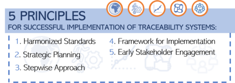 Identification & Traceability of Medicinal Products – A tool towards strengthening health systems